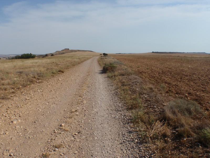 Caminos hacia zaragoza