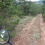 Bonitos caminos