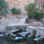 oasis de ich